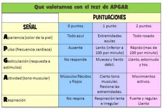 EL TEST DE APGAR